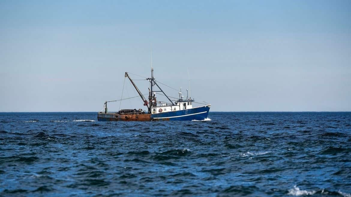 How Illegal Fishing Is Being Tracked